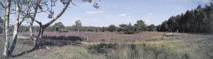 Eerste natuurbegraafplaats in Overijssel