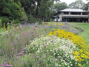 Snoek Puur Groen passie voor groene tuinen